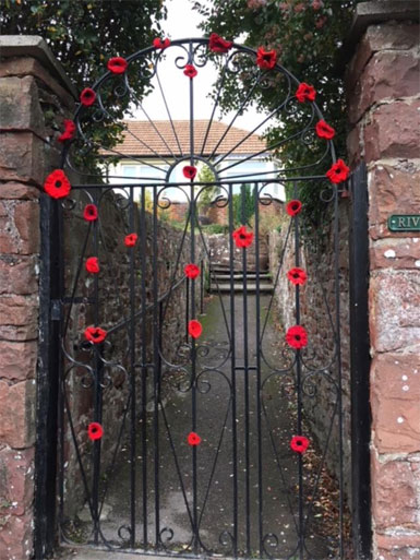WW1 Poppies Bishopsteignton