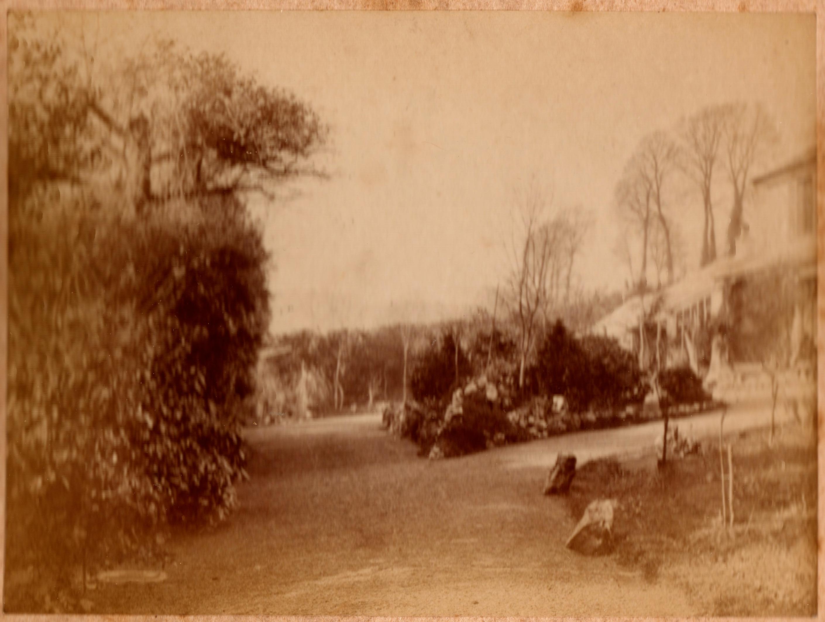Delamore4 House:Garden