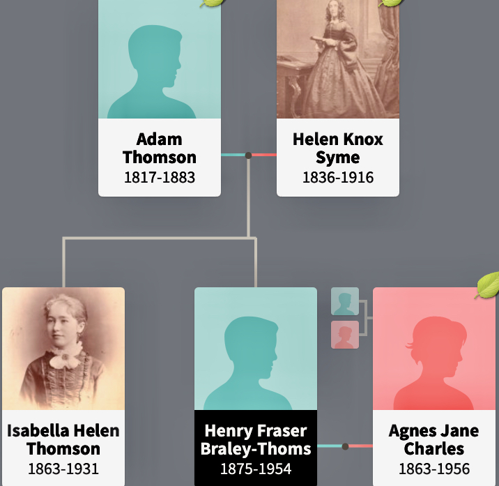 Section From Thomson Family Tree