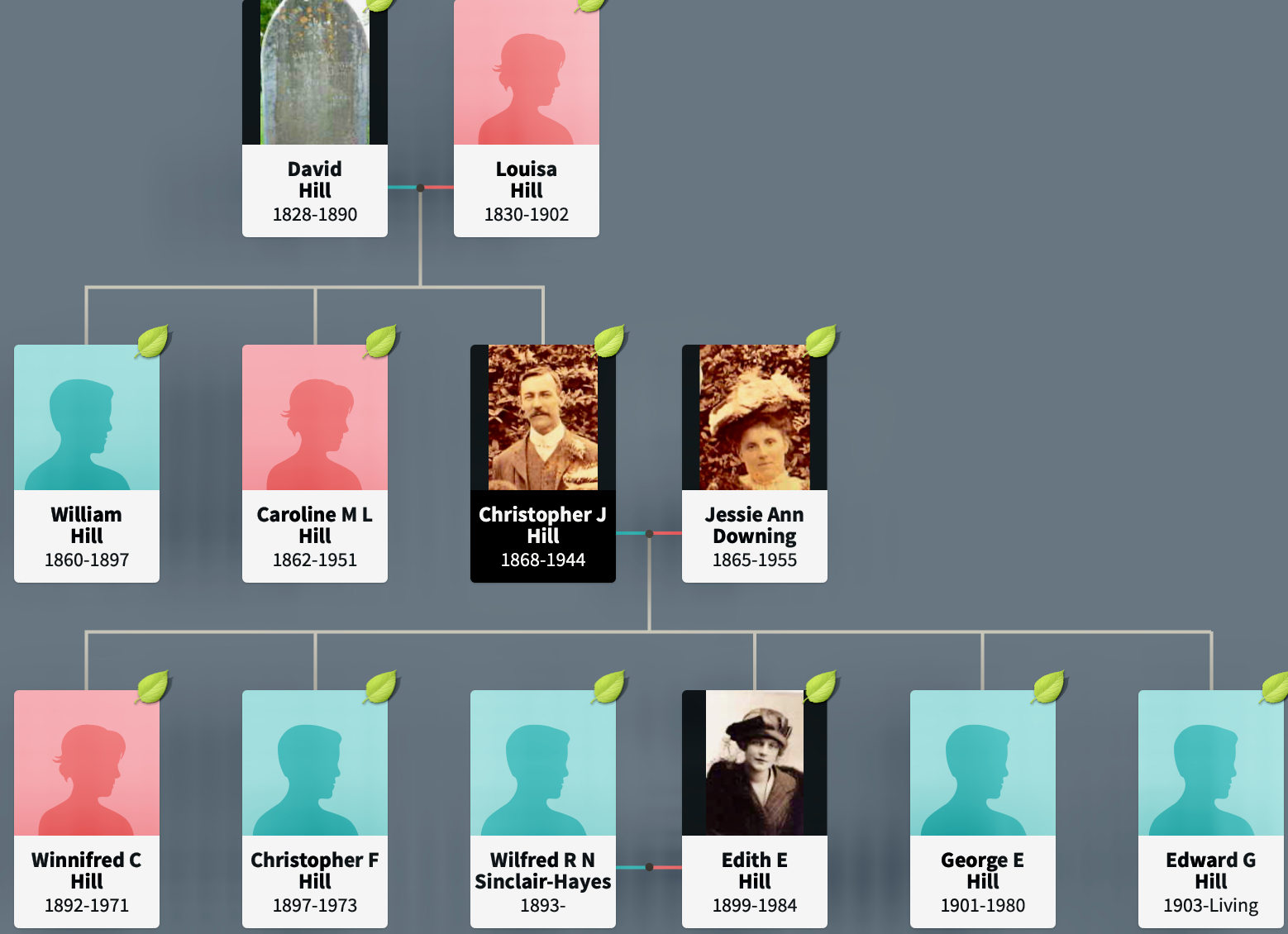 Section of Hill Family Tree