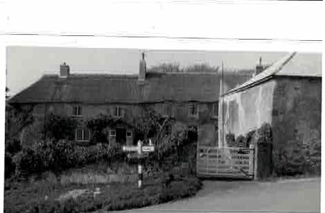 Ashill Farm 1965
